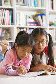 Asian sisters doing homework in library — Stock Photo
