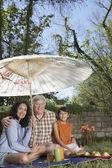 ヒスパニック祖父母と孫のピクニック — ストック写真
