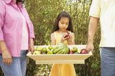 Hispanic family with tray of fruit outdoors — Stock Photo