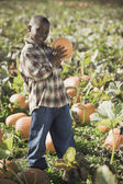 African boy holding pumpkin in pumpkin patch — Stock fotografie