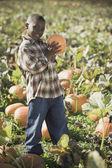 African boy holding pumpkin in pumpkin patch — Stock Photo