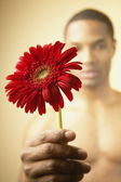 Man holding flower — Stock Photo