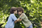 Two brothers playing outdoors — Fotografia Stock