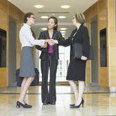 Three businesswomen talking — Stock Photo