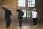 Three seniors practicing Tai Chi indoors — Stock Photo