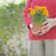Midsection of woman holding flowers — Stock Photo
