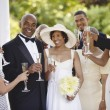 Wedding guests toasting bride and groom — ストック写真 #18573291
