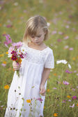 Girl in field picking wildflowers — Stock Photo