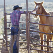 Royalty-Free Stock Photo: Young man in a cowboy outfit petting a horse