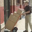 Side view of delivery man with boxes — Stock Photo #23218730