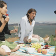 Friends having picnic — Stock Photo