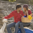 Couple with picnic lunch on scooter — Stock Photo