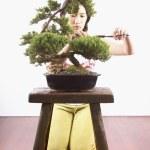 Woman trimming bonsai tree — Stock Photo #23222164
