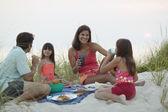 Kumsalda piknik yemek aile — Stok fotoğraf