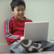Stock Photo: Young boy using laptop