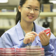 Asian female medical technician with petri dish — Stock Photo