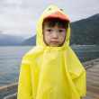 Portrait of boy in ducky raincoat - Stock Photo