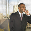Stock Photo: Businessmon bridge talking on cell phone