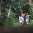 Family hiking on trail — Stock Photo