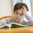 Stock Photo: Young boy reading book