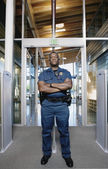Security officer standing by entranceway — Stock Photo