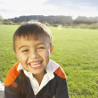 Young boy smiling for the camera in the grass - Stock Photo