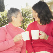 Senior Asian mother and grown daughter laughing and drinking tea — Stock Photo #23243478