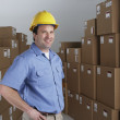 Male warehouse worker wearing hard hat in warehouse — Stock Photo
