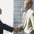Stock Photo: Two businessmen shaking hands in front of window