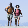 Couple hiking — Stock Photo #23245244