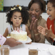 Young girl blowing out the candles on her birthday cake - Stock Photo