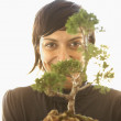 Businesswoman holding a bonsai tree — Stock Photo