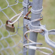 Close up of lock on chain link fence — Stock Photo #23245950