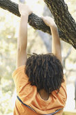 Young boy hanging from a tree branch — Stock Photo