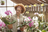 African American woman in greenhouse — Stock Photo