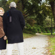 Senior couple walking and holding hands in park — Stock Photo