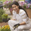 Hispanic woman gardening - Stock Photo