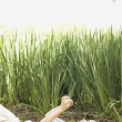 Hispanic girl lying in grass — Stock Photo #23253724