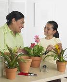 ヒスパニック系の祖母と孫娘屋内ガーデニング — ストック写真