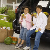 Brother and sister at back of car with grocery bags — Stockfoto