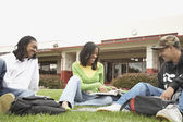 Group of African students studying in grass — Stock Photo