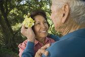 Senior man putting flower in senior woman's hair — Stock Photo