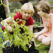 Mother and daughter gardening — Stock Photo #23275240