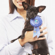 Portrait of Asian woman holding dog with blue ribbon — Stock Photo