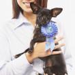 Asyalı kadın holding köpek mavi kurdele ile portresi — Stok fotoğraf