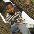 African boy climbing tree — Stock Photo