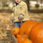 African boy pulling wagon of pumpkins — Stock Photo #23275586