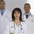Portrait of multi-ethnic doctors — Stock Photo #23276416