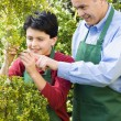 Hispanic father and son working at garden center — Stock Photo