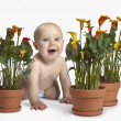 Baby crawling next to potted plants — Stock Photo